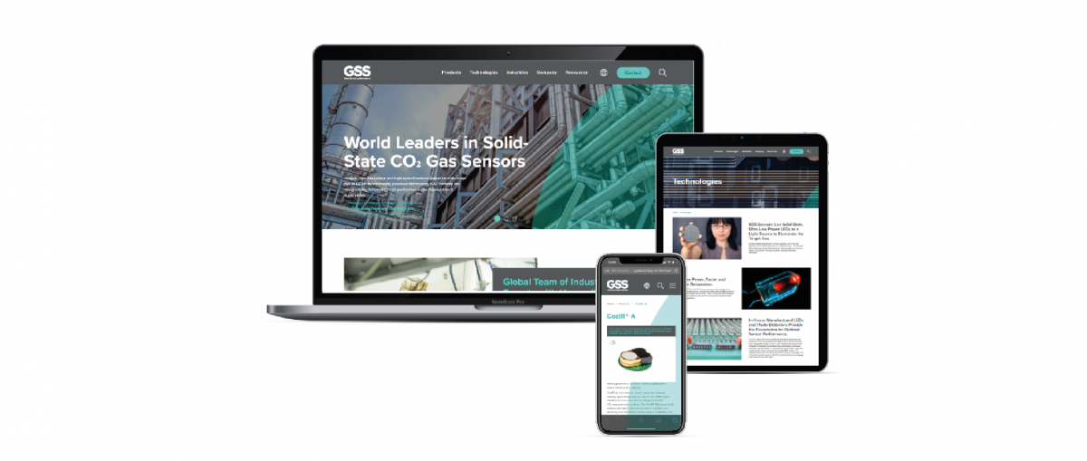 Pioneers in Solid State Gas Sensors Launches New Website